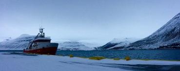 Port de Ísafjörður